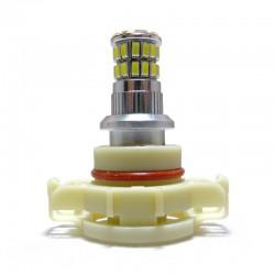 Ampoule Led PS19W à 36 leds 3014